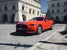 Ford Mustang, Jarosław