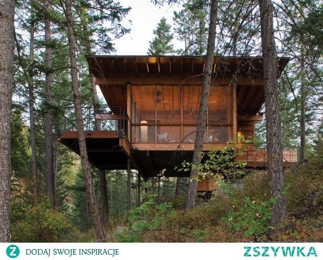 Domek w lesie :) Odkąd pamiętam kochałam las, nature, rośliny mnie fascynowały. Teraz spełnienie marzeń o podobnym domku jest w trakcie realizacji :) Podobają się Wam takie miejsca? Dla mnie jest idealne