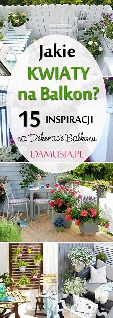 Jakie Kwiaty na Balkon? TOP 15 Propozycji na Dekorację Balkonu Kwiatami