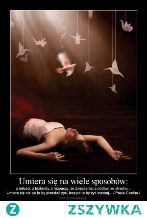 Żyjąc inaczej nie oznacza, że przestaniesz umierać z tych samych powodów. Chyba, że wyzbędziesz się uczuć. Ale, pozbycie się wszelkich uczuć oznacza śmierć za życia! Zatem koniec oznacza początek, a początek zmierza ku końcowi. Jakież to smutne, a zarazem radosne. Paradoks?