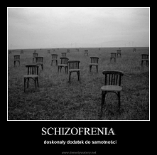 Schizofrenik w samolocie *k...