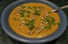 Zupa krem z warzyw sezonowych