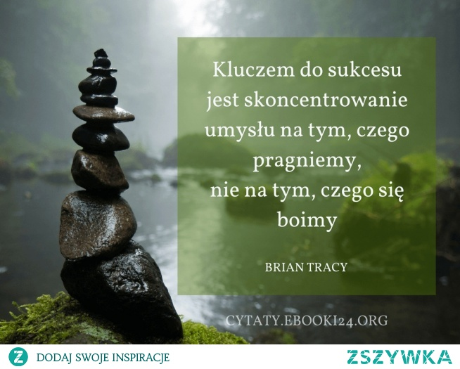 Brian Tracy Cytat O Sukcesie Na Cytaty Zszywkapl