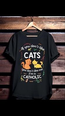 kot,cat