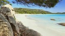 Polombaggia Korsyka
