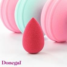 Malinowa Różowa Pantera.  Beauty by Donegal