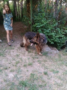 Fundacja Zwierzęta Niczyje ...