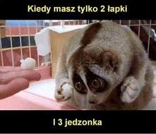 Slodziaczek.