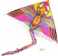 Latawiec Ptak (3/208629)