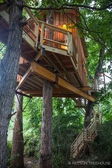 Domek na drzewie :)