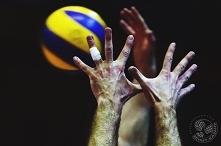 Siatkówka to prosta gra, trzeba tylko trafić w to pomarańczowe. ~Waldemar Wsp...