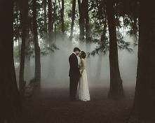 w lesie dym biały