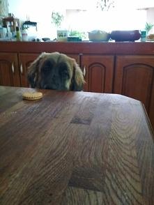 a czyje to ciasteczko??