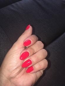 letnia czerwień :)