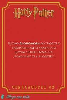 Ciekawostki [KLIK] z Harry'ego Pottera