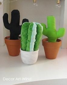 kaktusiki- pojemniki, wysok...