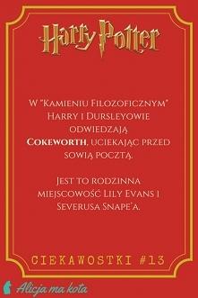 Smaczki z Harry'ego Pottera