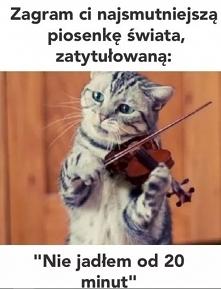 Kocia muzyka.