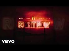 Nick Jonas, Robin Schulz - ...