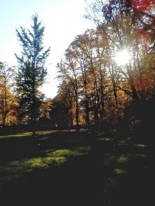 W tak piękny dzień, trudno siedzieć w domu ;-)