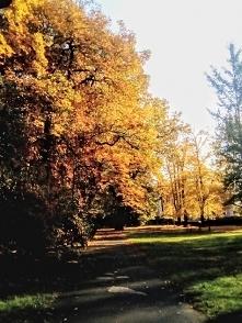 """""""Jesień""""  —   Zanurzać zanurzać się w ogrody rudej jesieni i liście zr..."""