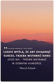 cytaty po polsku - codzienn...