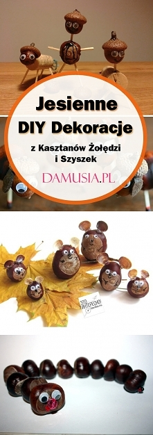 TOP 20 Inspiracji na Jesienne DIY Dekoracje z Kasztanów Żołędzi i Szyszek – I...