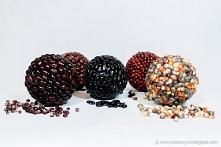Kule styropianowe obklejone kolorową kukurydzą i kolorową fasolką.