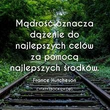 France Hutcheson cytat o mądrości
