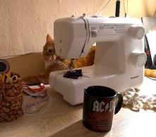 A kto tu się przyczaja za maszyną? Koci rudzielec uwielbia pchać się z łapkam...