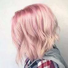 różowy bob