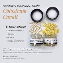 Colostrum jest pierwszym mlekiem, które zapewnia ochronę i odporność. Bazując...