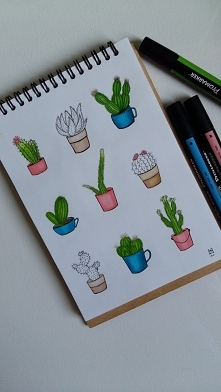 Kaktusy fb/zuzarysowana; ig: @suzanne.musial