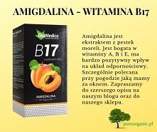 Amigdalina – witamina B17
