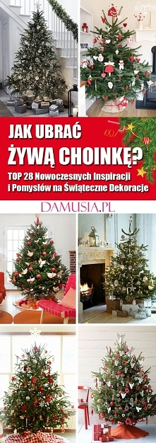 Jak Ubrać Żywą Choinkę – TOP 28 Nowoczesnych Inspiracji i Pomysłów na Świątec...