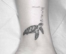 Żółwik. ❤