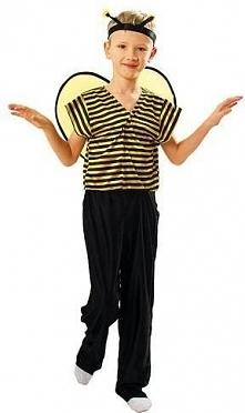 Strój Gucio - przebrania , kostiumy dla dzieci