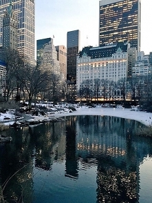 New York ❄️