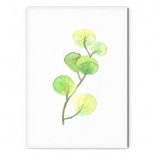 Plakat skandynawski botanic...
