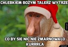 mojecytatki.pl