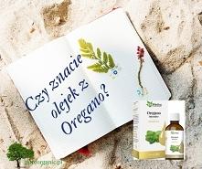 Olejek z oregano i jego właściwości.  #olejzoregano, #olejekzoregano, #oregano, #pureorganic, #suplementy, #witaminy, #zdrowie #superfoods