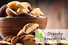 Orzechy brazylijskie - właściwości odżywcze