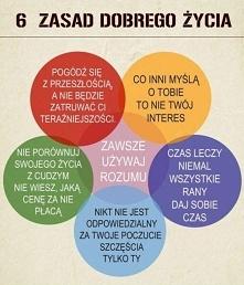 6 zasad