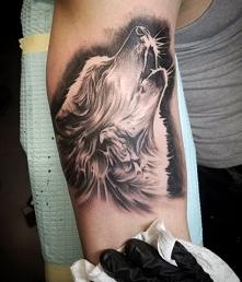 5 Inspiracji Tatuaże Wilk Na Zszywkapl