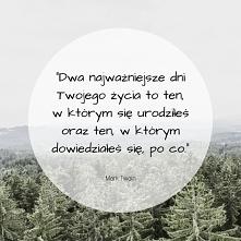 #cytat #doceńsiebie#follow4follow #beautiful #zapomocącanva #zainspirujsie