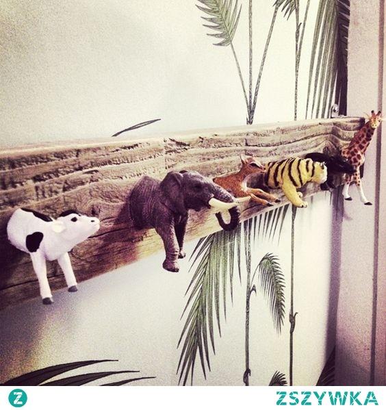 zwierzątka w domu