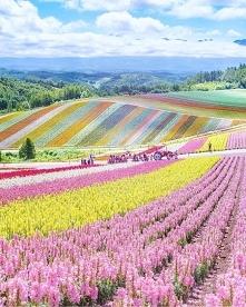 Hokkaido japonia
