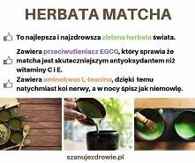 Najzdrowsza zielona herbata świata