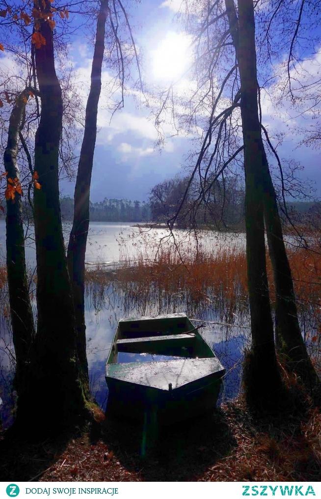 Jezioro Stęszewskie w Puszczy Zielonce.