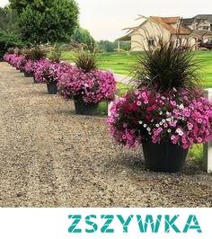 Garden Answer